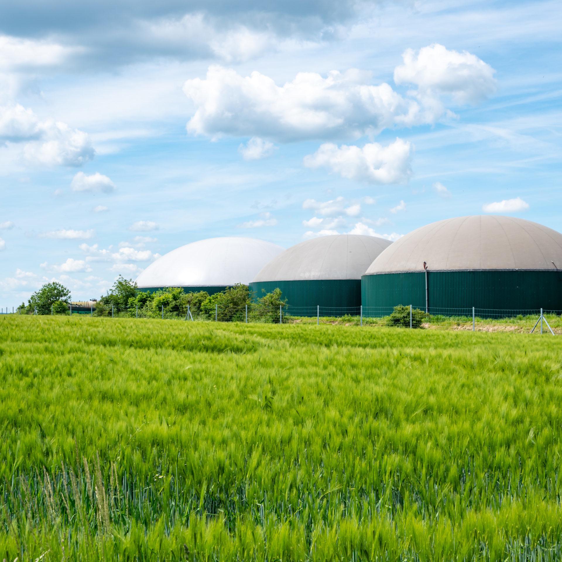 Biogas,Production,,Biogas,Plant,,Bio,Power